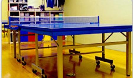 相模卓球センター