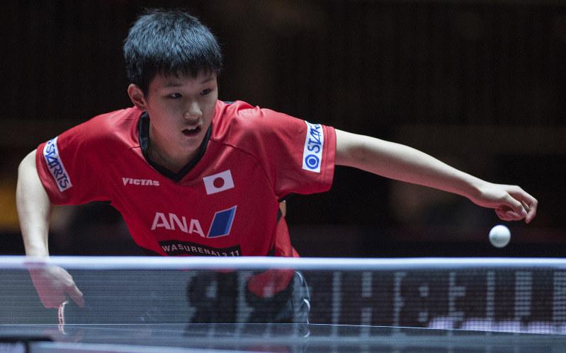 丹羽と張本はベスト8 最終日試合スケジュール 世界選手権デュッセルドルフ大会最終日 卓球