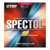 スペクトル・21 sponge